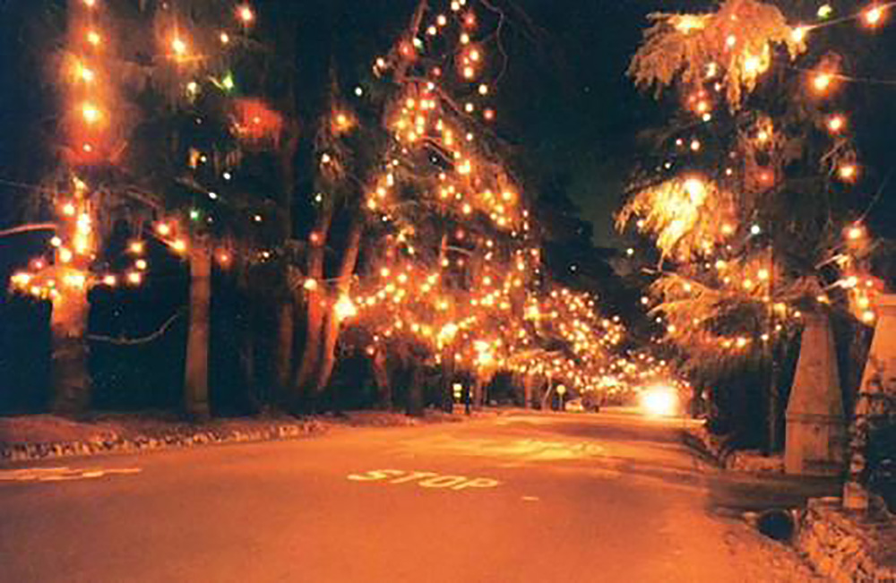 christmas-tree-lane
